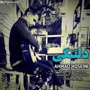 دانلود آهنگ جدید احمد حسینی به نام دلتنگی