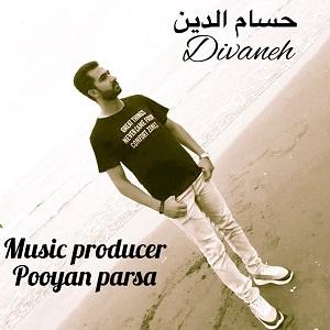دانلود آهنگ جدید حسام الدین به نام دیوانه