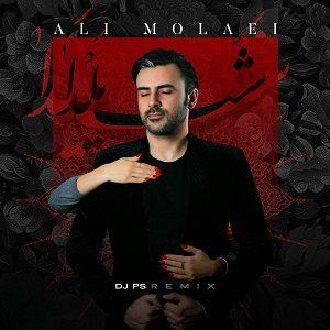ریمیکس جدید و شاد علی مولایی به نام شب یلدا توسط دیجی پی اس