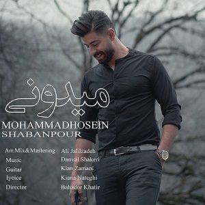 دانلود آهنگ جديد محمد حسین شعبان پور به نام میدونی
