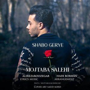 دانلود آهنگ جدید مجتبی صالحی به نام شب و گریه