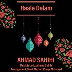 دانلود آهنگ جدید احمد صحیحی به نام حال دلم