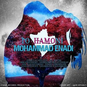 دانلود آهنگ جدید محمد عنادی به نام تو همونی