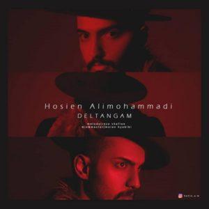 دانلود آهنگ جدید حسین علی محمدی به نام دلتنگم