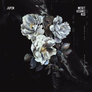 دانلود آهنگ جدید ژوپین به نام مثت هیشکی نیس