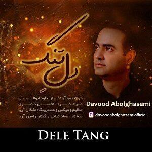 دانلود آهنگ جدید داوود ابوالقاسمی به نام دل تنگ
