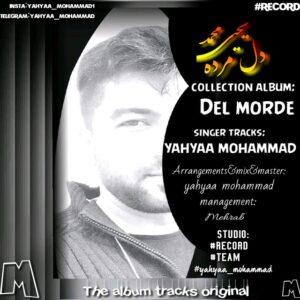 دانلود آلبوم جدید یحیی محمد به نام دل مرده
