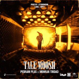 دانلود آهنگ جدید مهران تیرداد و پلاس به نام تله موش