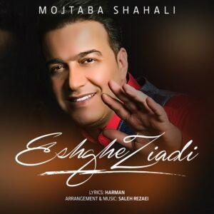 دانلود آهنگ جدید مجتبی شاه علی به نام عشق زیادی