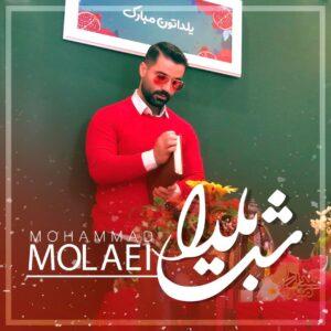 دانلود آهنگ جدید محمد مولایی به نام شب یلدا