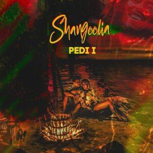 دانلود آهنگ جدید پدی ای به نام شنگولیا , Pedi I - Shangoolia