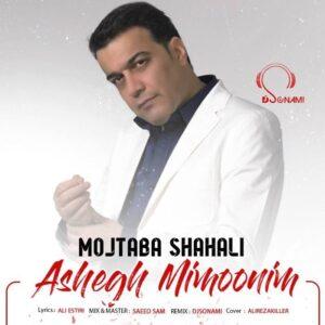 دانلود آهنگ جدید مجتبی شاه علی به نام عاشق میمونیم ( دیجی سونامی ریمیکس )