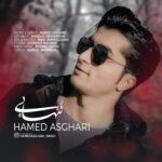 حامد اصغری