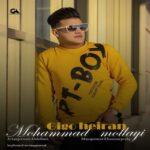 محمد ملایی