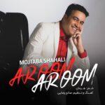 Mojtaba Shahali - Aroom Aroom