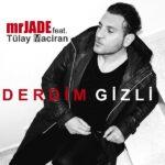 دانلود آهنگ جدید Mr Jade به نام Derdim Gizli