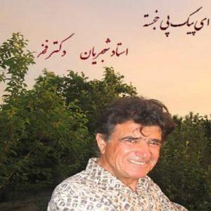 دانلود آلبوم اجرای خصوصی محمد رضا شجریان و دکتر فخر به نام ای پیک پی خجسته